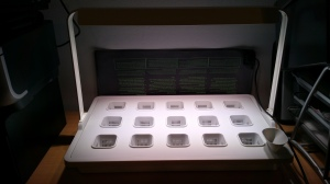 IKEA cultivation insert set for hydroponics